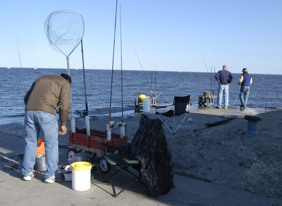 Michigan's Great Lakes and inland fisheries will be guided by new five year plan. Photo: Howard Meyersoon