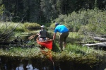 Beaver dams, blowdowns and log jams are plentiful on the west branch of the Peshekee River.