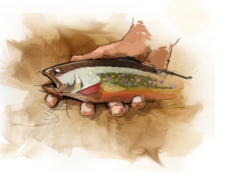 Beamon's Brookie. Illustration by Joe Van Faasen