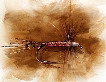 Bob Fortney's attractor fly. Illustration by Joe VanFaasen.