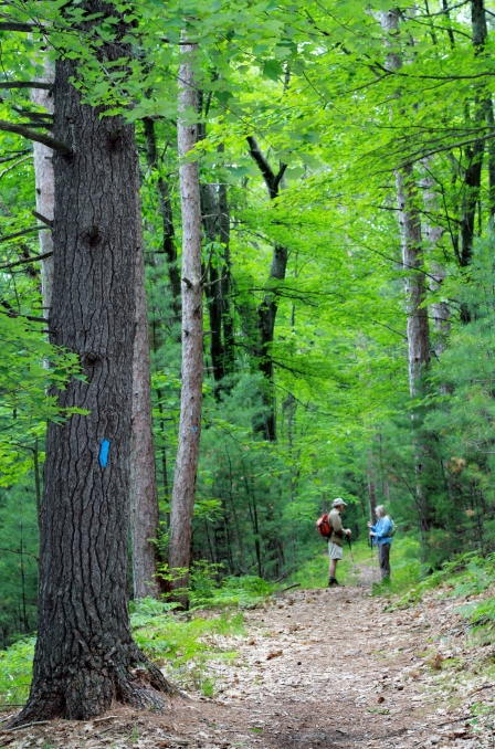 Guernsey Lake Hike 5 cover_edited