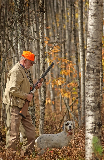 Bird hunters can expect to have a good season this fall. Photo: Dave Kenyon. Michigan DNR.