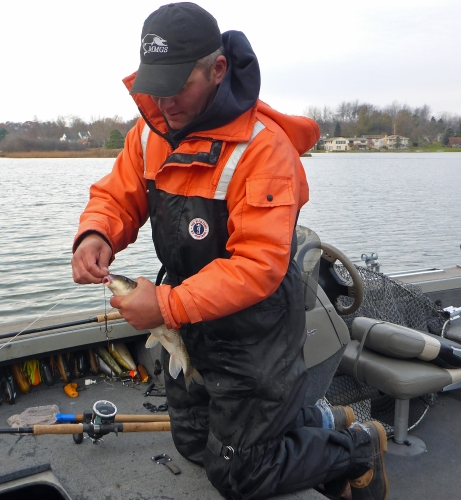 Will Schultz rigs up a live sucker which proved to be what muskies wanted on this cold Novemeber day. Photo: Howard Meyerson