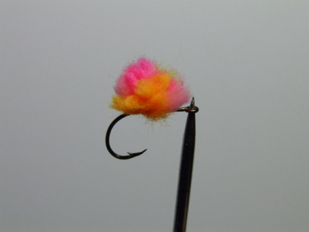 Bill Fuhs caught his steelhead on this Crazy Egg pattern tied by Chuck Scribner. Photo courtesy of Scribner Outfitters