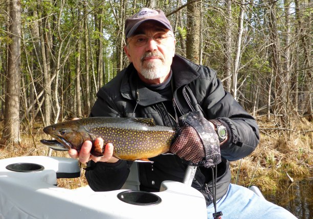 Big brook trout on tiny flies. Photo © 2013 Howard Meyerson