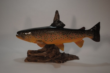16 Inch Brown Trout