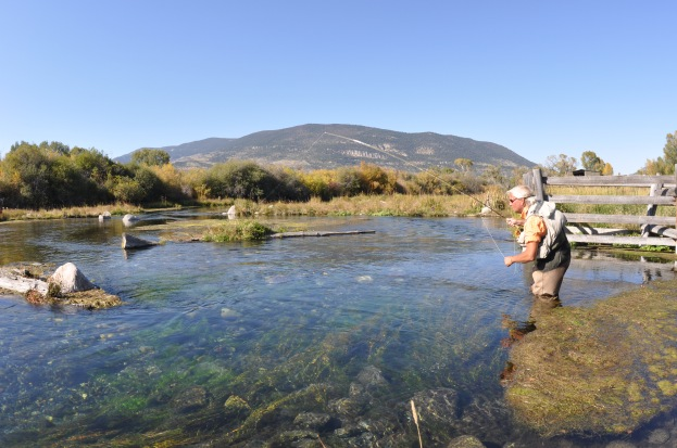 Matt Supinski fishes Nelson's Spring Creek in Montana while shooting the Selectivity DVD. Photo by: Tom Harman