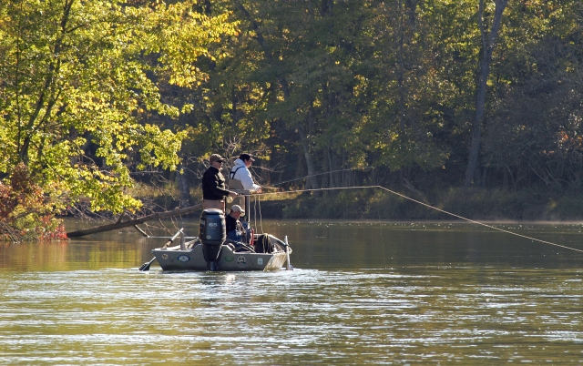 Lake michigan salmon runs proving slower smaller than for Platte river michigan fishing