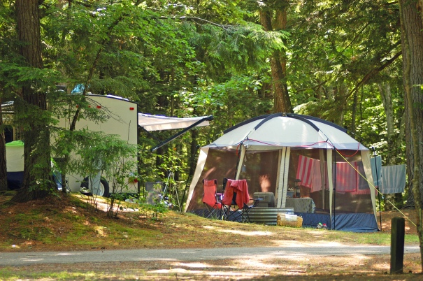 Hoeft State Park: Camping fees at PH Hoeft State Park, north of Rogers City on Lake Huron, went up only $1 per night. Photo. Howard Meyerson
