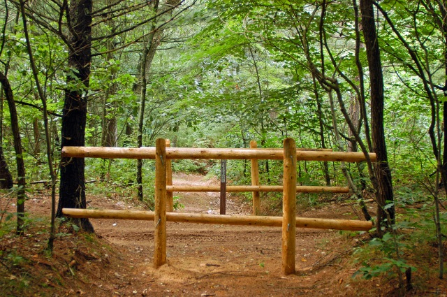 Barricades like these are used to close off unwanted user-created two tracks in the national forest. Photo: Howard Meyerson