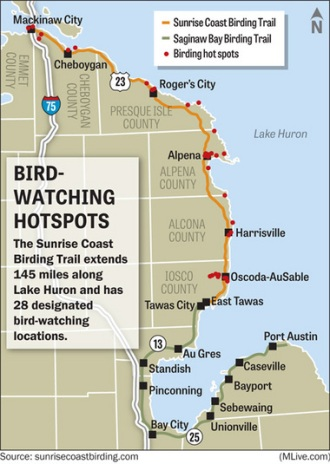 Sunrise Coast Birding Trail 17536316-large