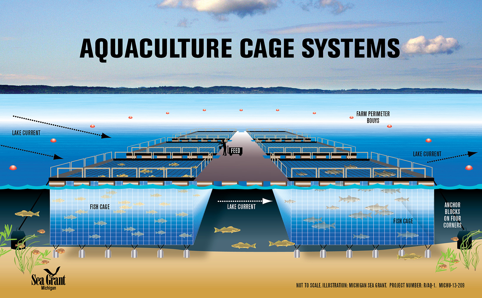 Officials examine fish farming in the Great Lakes | The