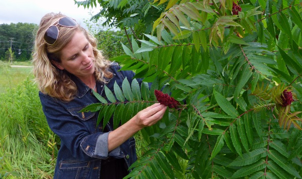 Herbalist and wild food forager, Lisa Rose stops to sample sumac berries. Photo: Howard Meyerson