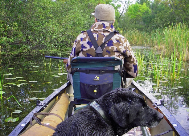 Duck hunters looking for mallards and wood ducks will often hunt the small wooded waters. Photo: Howard Meyerson