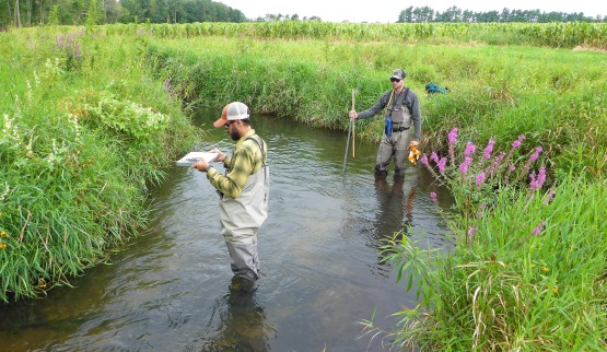 Justin Wenger (left) and Graeme Zaparzynski (right) prepare to take some measurements in Cedar Creek where they found a radio-tagged brook trout they are studying. Photo by Howard Meyerson