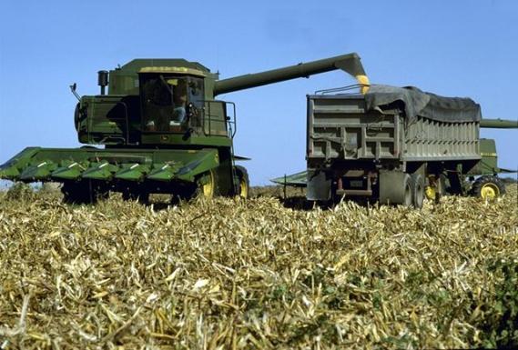 Combine-harvesting-corn wiki